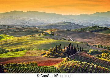 Tuscany landscape at sunrise. Tuscan farm house, vineyard,...