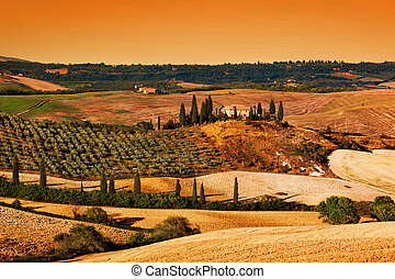 Tuscany landscape at sunset. Tuscan farm house, vineyard, hills.