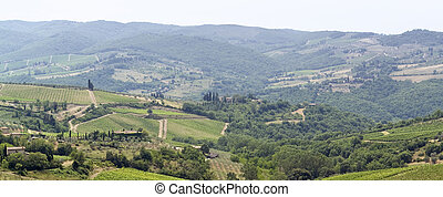 Tuscany landscape - panoramic scenery located in the Chianti...