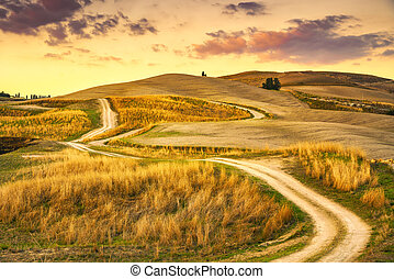 Tuscany landscape, rural road and green field. Volterra Italy