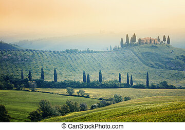 Tuscany landscape - Scenic view of typical Tuscany mist ...