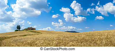 Tuscany landscape with the town of Pienza, Val d'Orcia, Italy