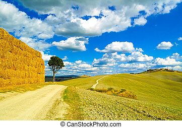 Tuscany, lonely tree, straw bales and white rural road. Siena, Orcia Valley, Italy, Europe.