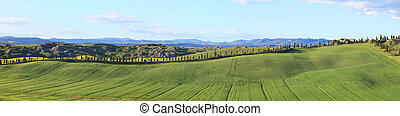 Tuscany, panorama 4-1 landscape with Cypress Trees row, green fields, blue cloudy sky and a farm on the right. Rural scene in Crete Senesi land near Siena, Tuscany, Italy, Europe.