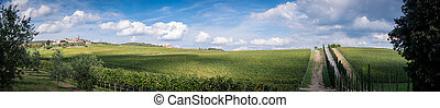 Tuscany panorama - View of scenic Tuscany landscape ,...