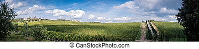 View of scenic Tuscany landscape , Chianti region, Tuscany, Italy