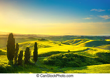 Tuscany, rural sunset landscape. White road and cypress trees. Volterra.