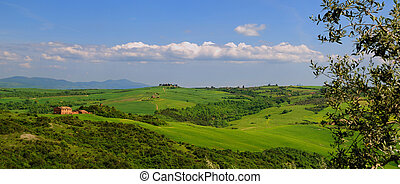 Tuscany - Summer Panorama