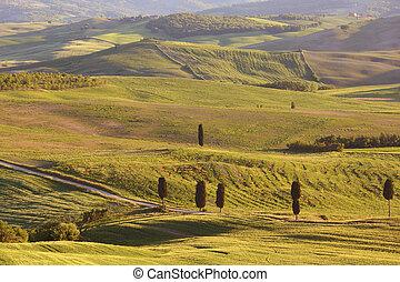 Tuscany sunset hill landscape