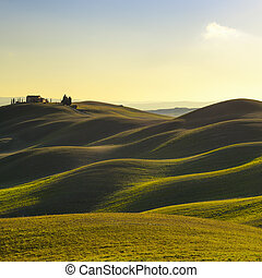 Tuscany, sunset rural landscape. Rolling hills, countryside...