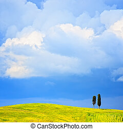 Tuscany, two lonely cypress trees and rural hill. Siena, Orcia Valley, Italy, Europe.