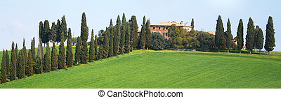 tuscany, val, italy., gebied, vallei, d\'orcia
