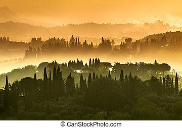 tuscany, vila, paisagem, ligado, um, nebuloso, manhã, em, julho