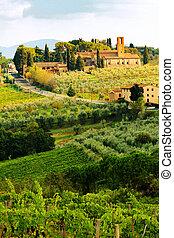 Tuscany Vineyard in Harvest Season - San Gimignano, Siena,...