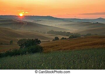 tuscany, visão cênica, névoa, paisagem, típico