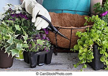 Tutorial of Ppreparing a Hanging Basket of Flowers