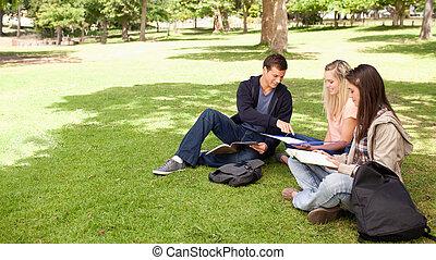 tutoring, 中に, a, 日当たりが良い, 公園
