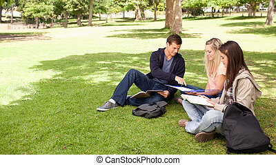 Tutoring in a sunny park - Student helping two female...