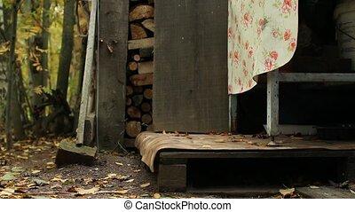 tuxedo cat silently goes - tuxedo cat walking along the path...