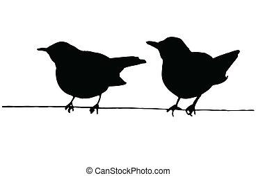 två fåglar, på, den, tråd
