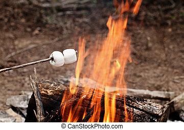 två, marshmallows, på, a, käpp, över, a, brasa