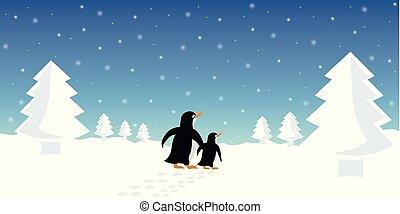 två, pingviner, vinter landskap, snöig