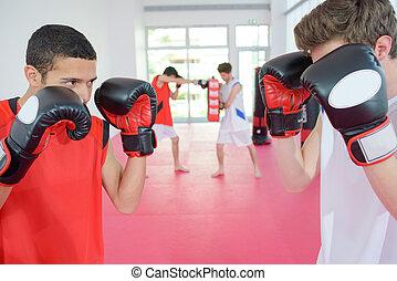 två, unga manar, boxning