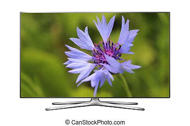tv, blåklint, avskärma, smart