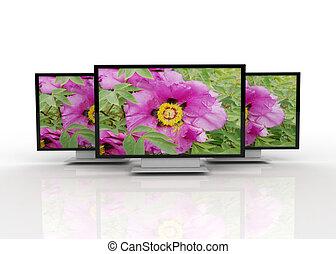 tv, concept