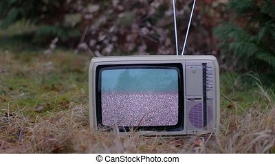 TV no signal in grass - White noise on analogue TV set in...