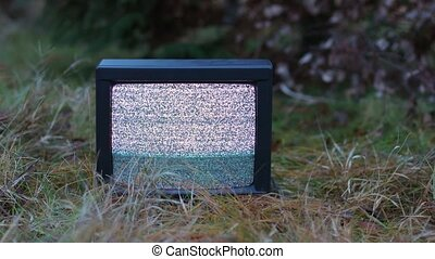 TV no signal in grass - White noise on analogue TV sets in...
