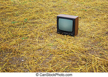 TV on the meadow