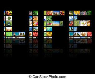 tv, panels., televisie, fabriekshal, technologie, concept