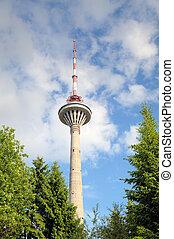 tv, tallinn, tower., estónia