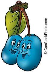 twee, blauwe , pruimen