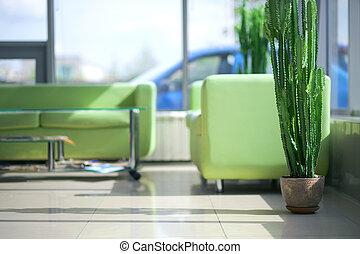 twee, groene, comfortabel, banken, in, de, interieur