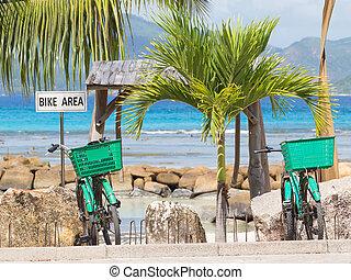 twee, groene, fiets