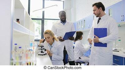 twee, mannelijke , wetenschappers, het bespreken,...