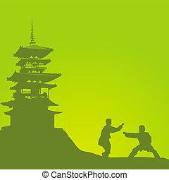 twee mannen, zijn, verloofd, in, een, kung fu, ag