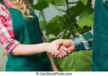 twee mensen, schuddende handen