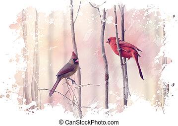 twee, noordelijke kardinalen, watercolor
