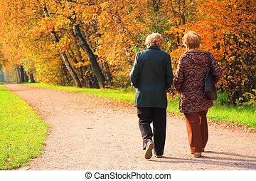 twee, oudere vrouwen, in park, in, herfst