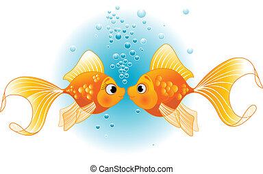 twee, vissen, verliefd