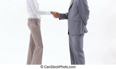 twee, zakenlui, schuddende handen