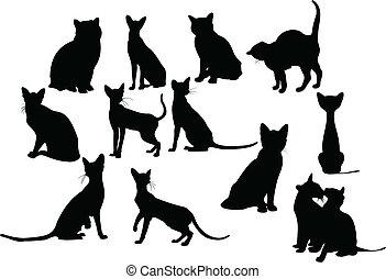 Twelve cats silhouettes