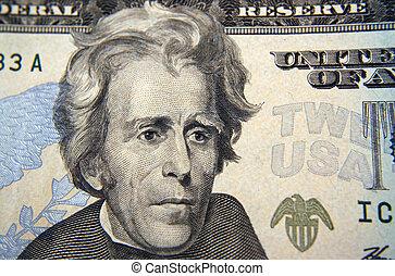 Twenty Dollar bill Macro Andrew Jackson