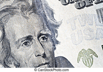 twenty dollars  - 	Close-up of a twenty dollars banknote