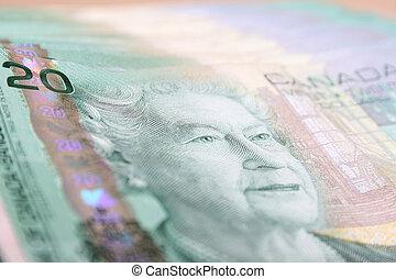 Twenty dollars - Canadian currency twenty dollar notes on a...