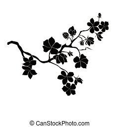 twig cherry blossoms - twig sakura blossoms. Vector ...