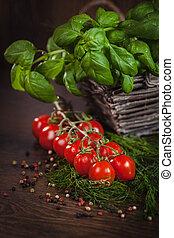 Twig of ripe tomatoes between green herbs